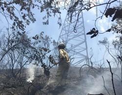 PTC2 nỗ lực chữa cháy rừng có nguy cơ ảnh hưởng đến lưới điện