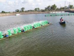 Dấu ấn 10 năm điện khí hóa nông thôn ở Trà Vinh
