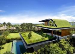 """Hàn Quốc giảm khí thải bằng chiến dịch """"Ngôi nhà xanh"""""""