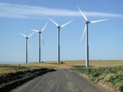 Cần có chính sách đồng bộ để phát triển điện gió