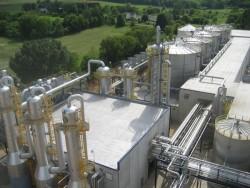Indonesia tăng cường phát triển năng lượng sinh học