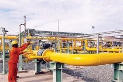 CNG: Khẳng định vai trò trong ngành công nghiệp khí