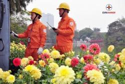 Diện mạo mới của Tổng công ty Điện lực TP. Hà Nội