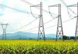 Cắt khí PM3, EVN tăng cường truyền tải điện vào miền Nam