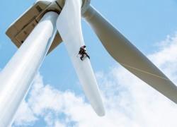 Ninh Thuận kiên quyết thu hồi các dự án điện gió chậm tiến độ