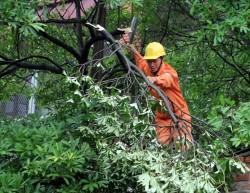 EVN cảnh báo về an toàn điện trong mùa mưa bão