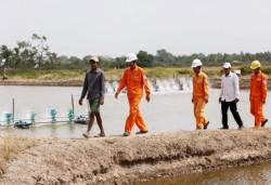 Điện lưới quốc gia đồng hành cùng phát triển với tỉnh Kiên Giang (Kỳ 2)