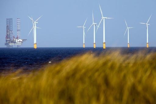 Thành lập Công ty CP Năng lượng tái tạo Điện lực Dầu khí