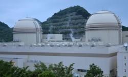 Nhật Bản tiếp tục xây dựng các nhà máy điện hạt nhân
