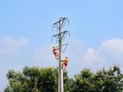 Công ty Điện lực Phú Thọ: 50 năm xây dựng và phát triển