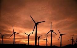 Năng lượng gió đảm bảo nhu cầu năng lượng của toàn thế giới