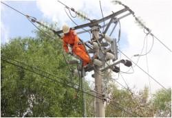 Tập trung khắc phục các sự cố lưới điện sau bão số 11