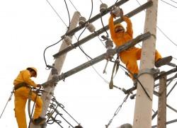 Đã cơ bản khắc phục các sự cố lưới điện sau bão số 11