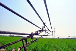 231 triệu USD tăng cường lưới truyền tải điện miền Nam