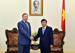 Phó Thủ tướng tiếp Tổng giám đốc Tập đoàn Dầu khí Zarubezhneft