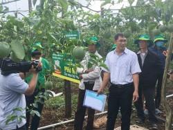 Phân bón Phú Mỹ cho cây chanh dây đạt năng suất cao