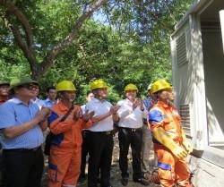Đảo Khỉ chính thức có điện lưới quốc gia