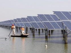 Khánh Hòa yêu cầu bảo vệ môi trường tại các dự án điện mặt trời