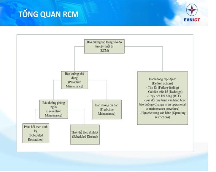 EVNGENCO 2 tổ chức chương trình đào tạo phân hệ RCM trên phần mềm PMIS