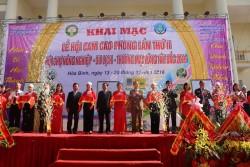 Phân bón Phú Mỹ đồng hành cùng vùng cam Cao Phong