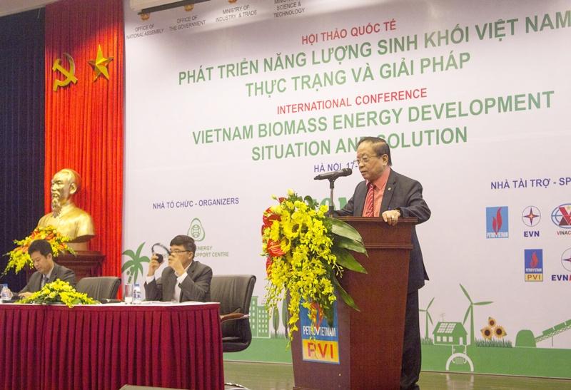 Năng lượng sinh khối góp phần đảm bảo an ninh năng lượng quốc gia 1