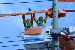 Ra mắt Đội thi công sửa chữa điện nóng Bình Dương