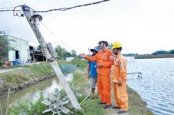 Điện cho phát triển thủy sản ở ĐBSCL: Hiện trạng và giải pháp [Kỳ 9]