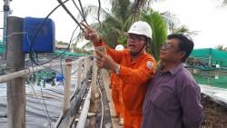 Điện cho phát triển thủy sản ở ĐBSCL: Hiện trạng và giải pháp [Kỳ 7]