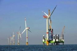Cần có chính sách ưu tiên đầu tư phát triển điện gió