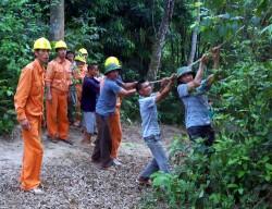 PC Tuyên Quang: Nỗ lực cải tạo lưới điện nông thôn