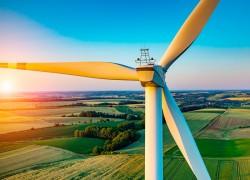 Nexif Energy tìm hiểu đầu tư điện gió tại Sóc Trăng