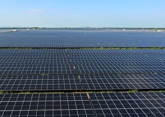 LONGi cung cấp 273 MW tấm pin cho Nhà máy điện mặt trời Xuân Thiện - Ea Súp (giai đoạn 1)