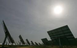 Phát triển năng lượng tái tạo ở Việt Nam: Điều kiện cần và đủ