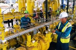 Khởi công dự án hệ thống thu gom và phân phối khí tại Thái Bình