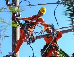 Tổng công ty Điện lực miền Nam: Năm mới, kỳ vọng mới
