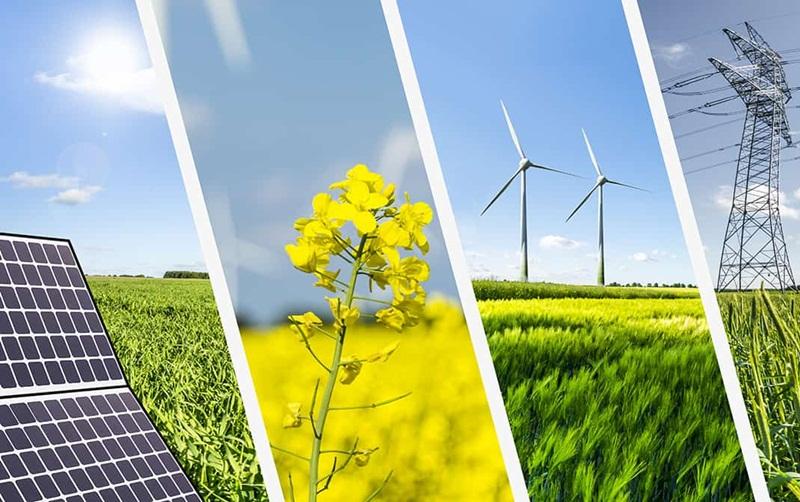 Năng lượng tái tạo trong 'Kế hoạch năng lượng sản xuất tại Việt Nam'