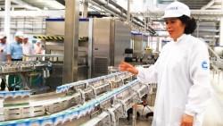 Nghiệm thu sơ bộ Nhà máy Polyester Đình Vũ