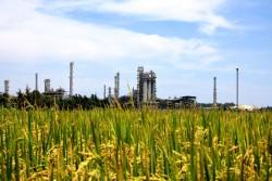 Quốc hội ủng hộ kiến nghị của Lọc hóa dầu Bình Sơn