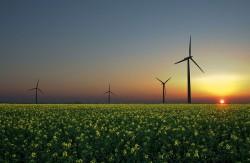 Tăng trưởng xanh là giải pháp để thế giới vượt thách thức