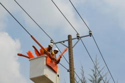 VCCI tham gia đánh giá độ hài lòng của khách hàng dùng điện