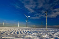 Định hình cơ cấu nguồn điện tái tạo trong Quy hoạch điện VIII