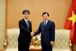 Chính phủ chia sẻ khó khăn với nhà đầu tư điện BOT Nhật Bản