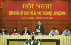 Thủ tướng chủ trì Hội nghị toàn quốc về phát triển dược liệu Việt Nam