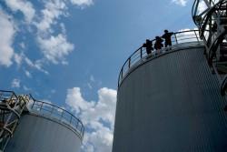 Giá dầu thấp tác động thế nào đến nền kinh tế Việt Nam? [Kỳ 2]