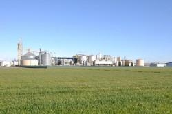 Chính sách EU làm suy yếu thị trường nhiên liệu sinh học?