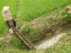 Quảng Nam kiến nghị điều vận các hồ thủy điện phục vụ sản xuất và đời sống vùng hạ du