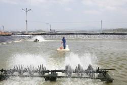 Bài toán nguồn điện cho phát triển thủy sản