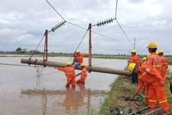 Đã khôi phục 11 đường dây 110kV sau bão số 2