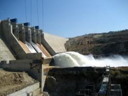 Cá chết ở hồ thủy điện Pleikrong không liên quan đến thủy điện