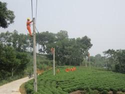 Bình Phước hỗ trợ ngành điện giải phóng mặt bằng